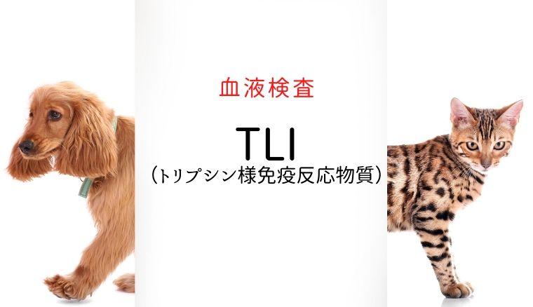 犬猫 TLI