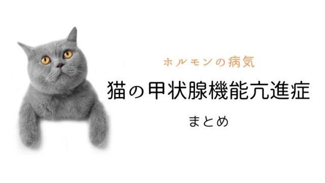 猫 甲状腺機能亢進症