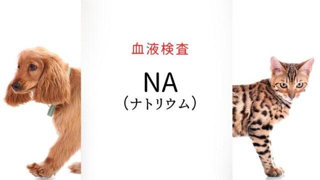 犬猫 ナトリウム