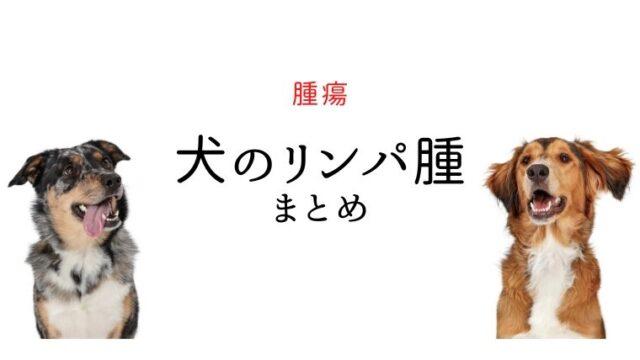 犬 リンパ腫