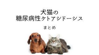 犬猫 糖尿病性ケトアシドーシス