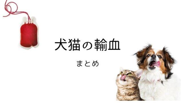 犬猫 輸血