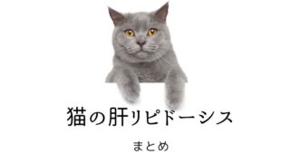 猫の肝リピドーシス