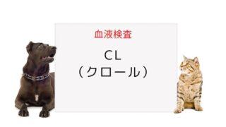 犬猫の血液検査 Cl(クロール)